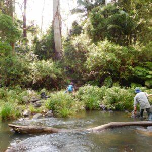 Creek Crossing with Women's Fitness Adventures