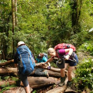 Hiking the trail with Women's Fitness Adventures