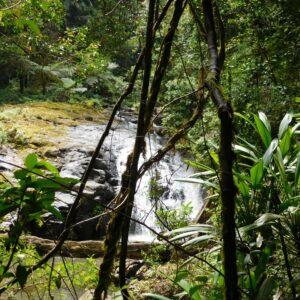 Women's Fitness Adventures at Christmas Creek Waterfall