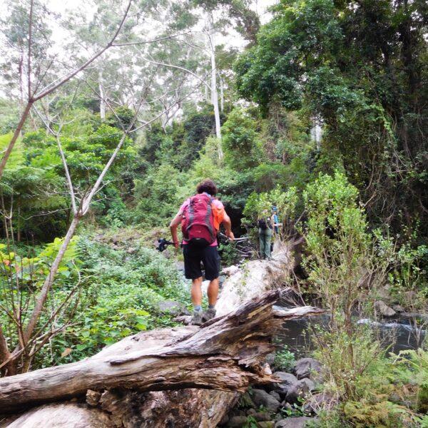 Natural Bridge with Women's Fitness Adventures