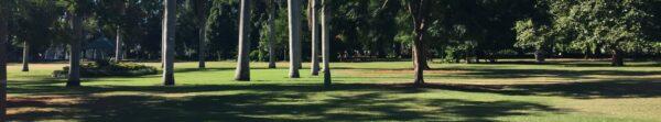 Brisbane Botanical Gardens with Womens Fitness Adventures