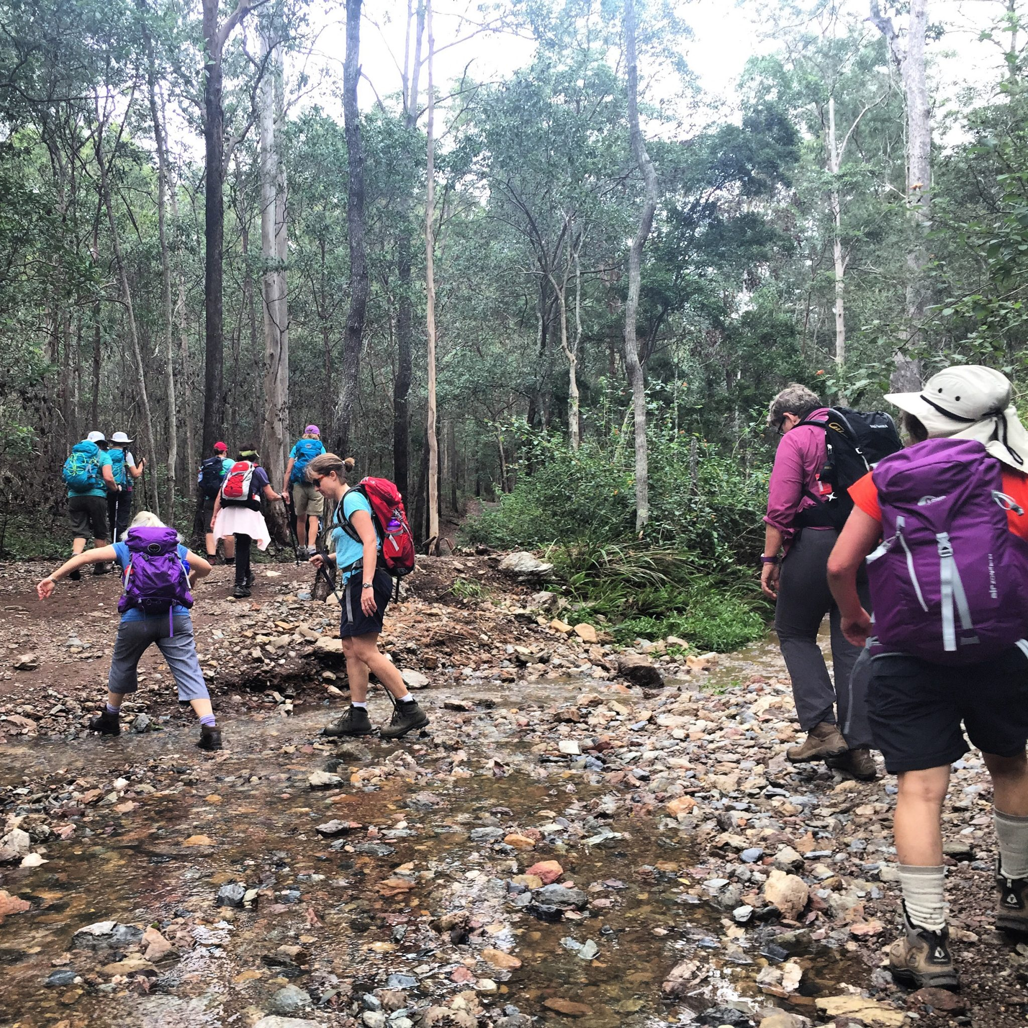 Monday hiking with Women's Fitness Adventures