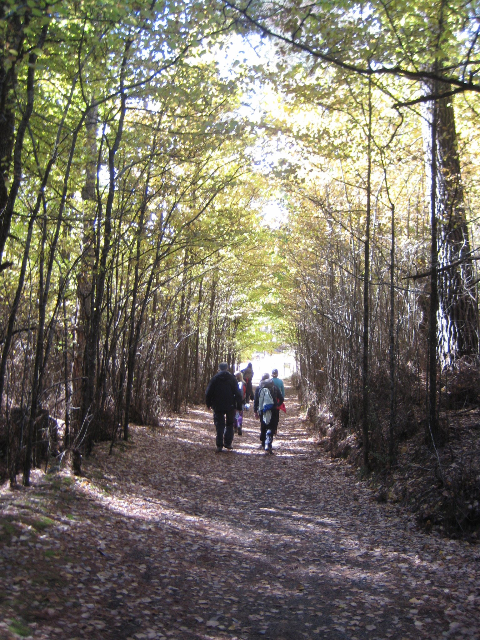 Introductory Hike Training with Women's Fitness Adventures