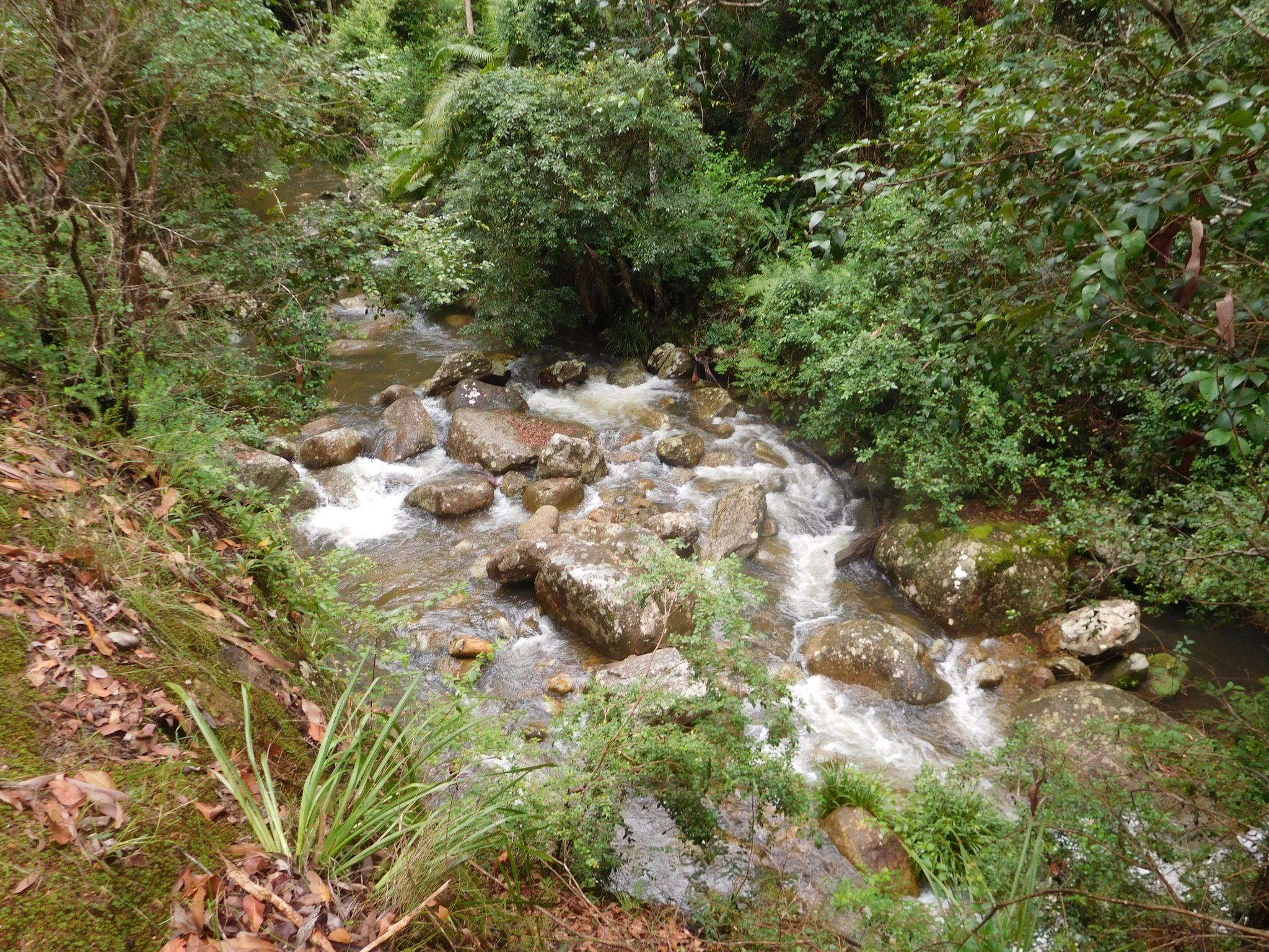 Barney Creek on the way to Cronan Creek Cascades