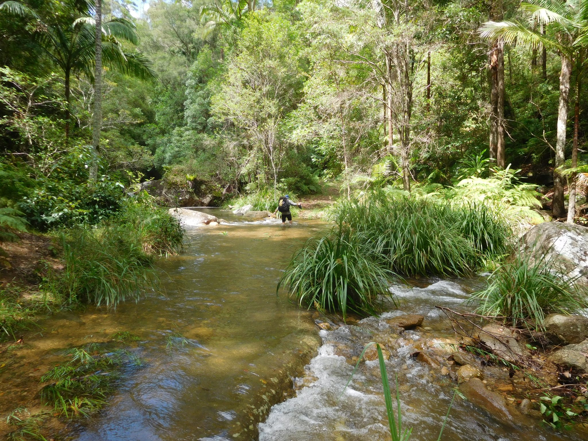 The coolness of the creeks on the way to Cronan Creek Cascades