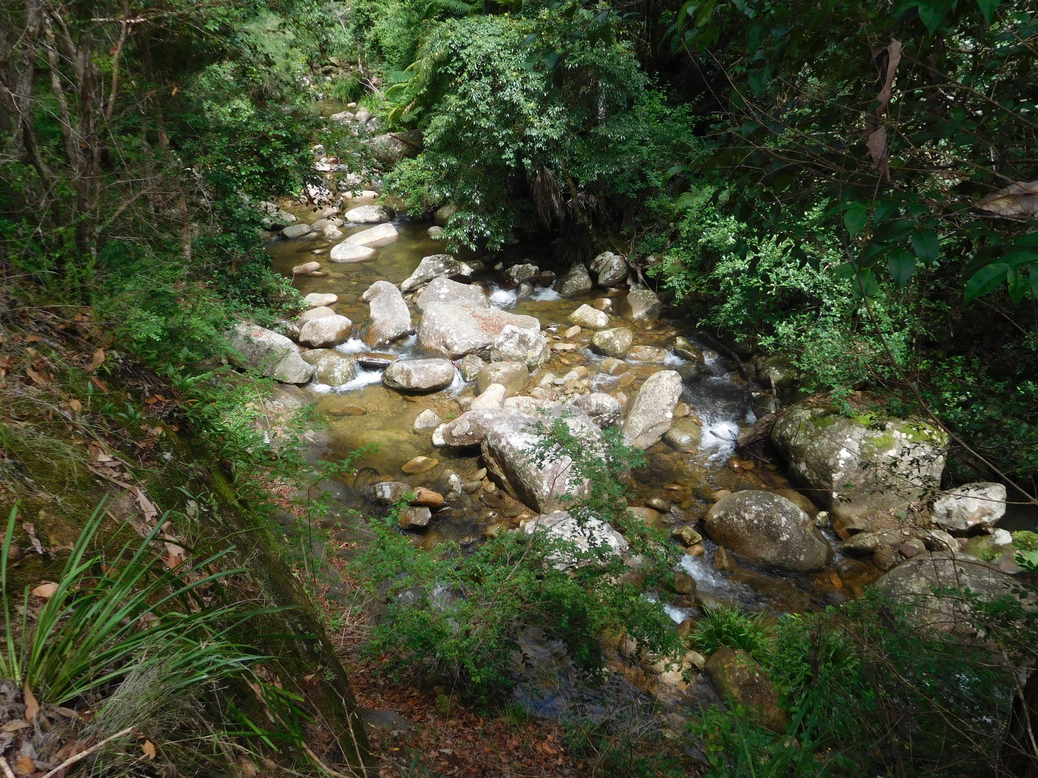 The local creeks