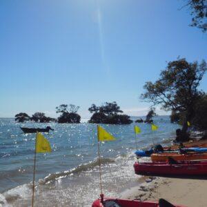 CoochieMudlo Kayaking with Women's Fitness Adventures