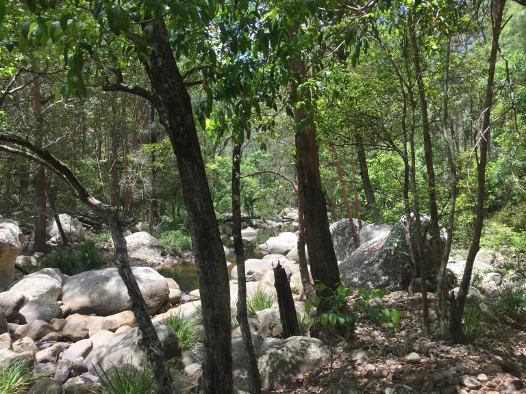 Cronan Creek and Logan River Explore
