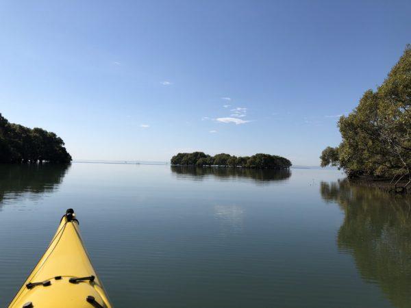 Introductory Kayaking Hilliards Creek