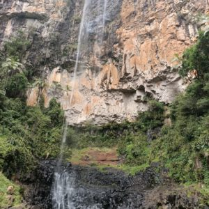 Springbrook National Park with Women's Fitness Adventures