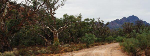 Flinders Ranges with Women's Fitness Adventures